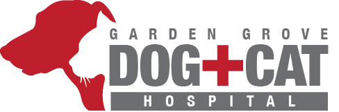 Garden Grove Dog & Cat Hospital